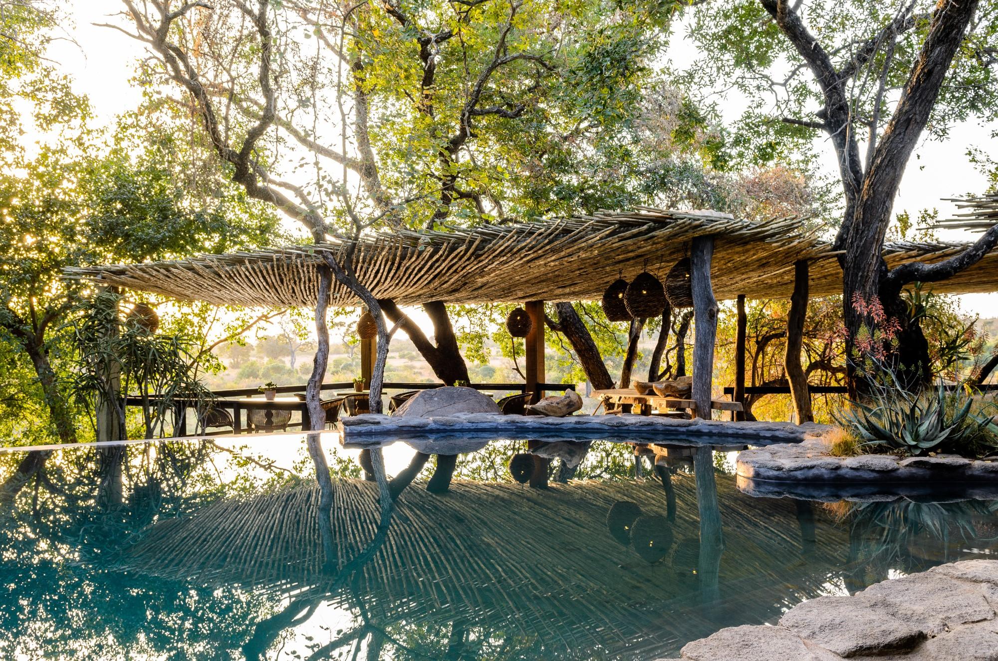 Singita Boulders Lodge (7) pool in trees resized